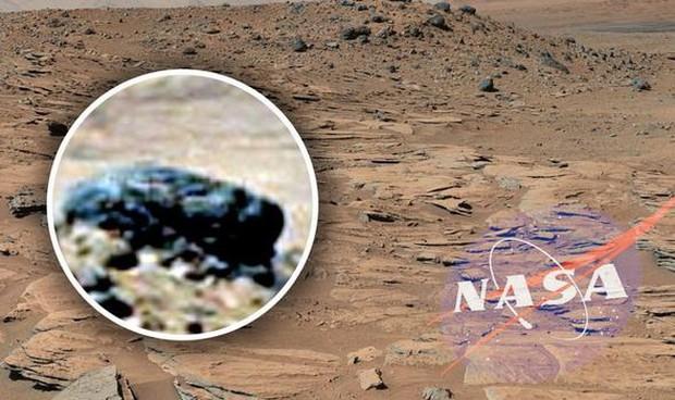 Cựu chuyên gia NASA khẳng định: Chúng ta đã tìm được bằng chứng về sự sống trên sao Hỏa - Ảnh 4.