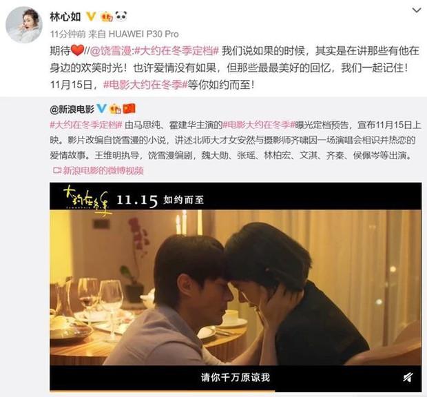 Chỉ với hai từ, Lâm Tâm Như đã làm rõ tin đồn ly hôn Hoắc Kiến Hoa - Ảnh 5.