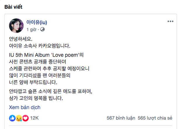 IU - người bạn thân của Sulli cũng đã quyết định ngưng phát hành album mới sau khi bị dân mạng chửi bới vô cớ - Ảnh 3.