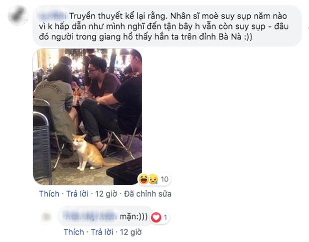 """Dân mạng chết cười với hình ảnh chú mèo xuất hiện ở Cầu Vàng: Trẫm là """"hoàng thượng"""", cần gì phải mua vé! - Ảnh 8."""