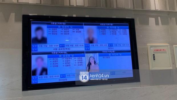 Độc quyền tang lễ Sulli từ Hàn: Fan khiếm thị một mình đến chờ, Yoo Ah In tiết lộ sao Hàn đã đến viếng từ rạng sáng - Ảnh 25.