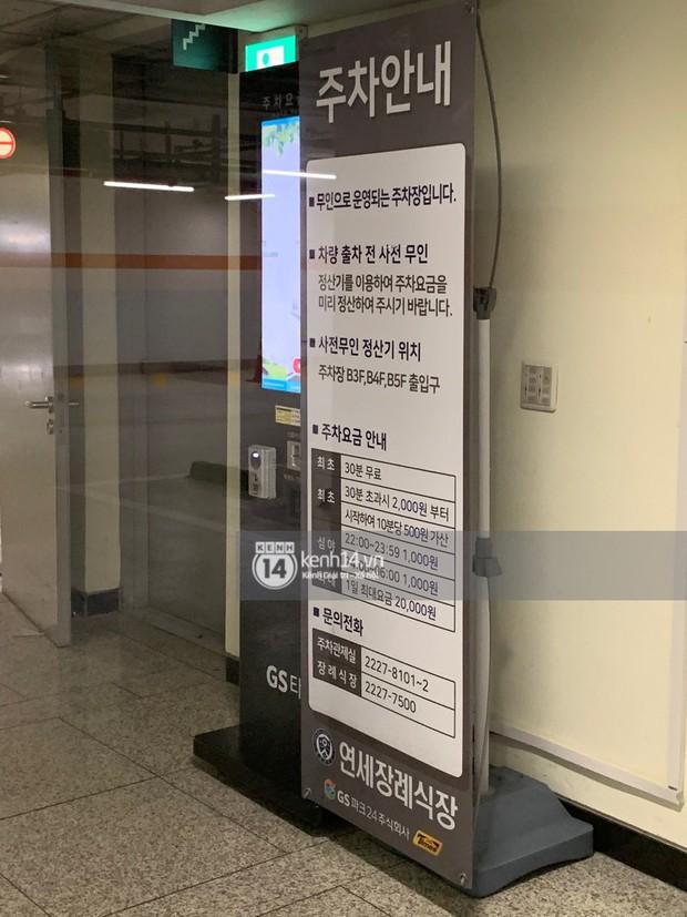 Độc quyền tang lễ Sulli từ Hàn: Fan khiếm thị một mình đến chờ, Yoo Ah In tiết lộ sao Hàn đã đến viếng từ rạng sáng - Ảnh 22.