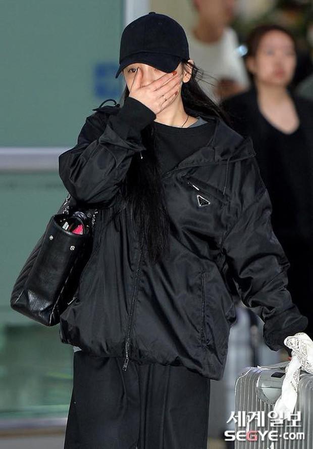 Goo Hara khóc nức nở tại sân bay, vội vàng từ Nhật trở về Hàn tạm biệt Sulli về cõi vĩnh hằng - Ảnh 3.