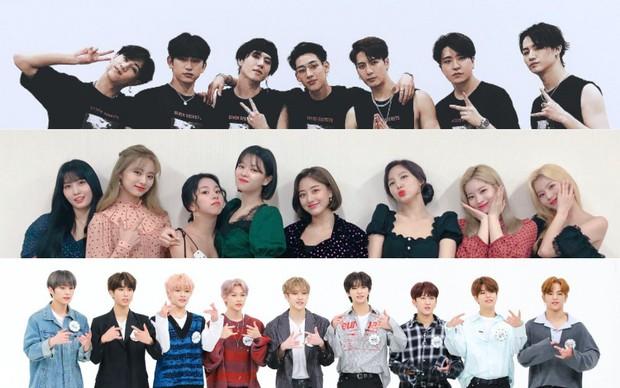 Trước khi dự AAA Việt Nam, đại gia đình JYP gồm GOT7, TWICE, Stray Kids đồng loạt thông báo tái xuất tại Hàn cuối 2019 - Ảnh 1.