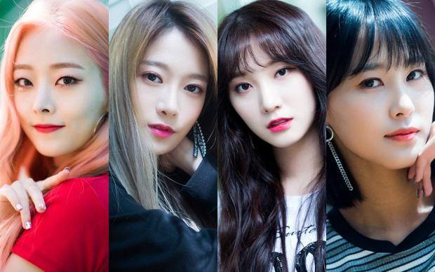 Sau màn tan rã khó hiểu, 4 cựu thành viên PRISTIN về chung công ty mới và chuẩn bị debut vào cuối năm? - Ảnh 2.