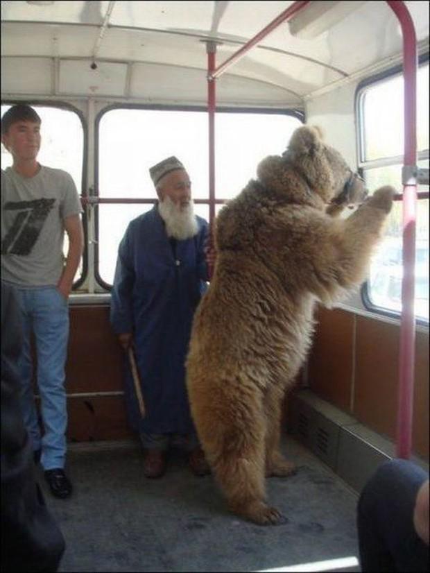 Loạt khoảnh khắc từ khó đỡ đến siêu hài hước mà bạn chỉ có thể nhìn thấy trên các phương tiện công cộng - Ảnh 12.