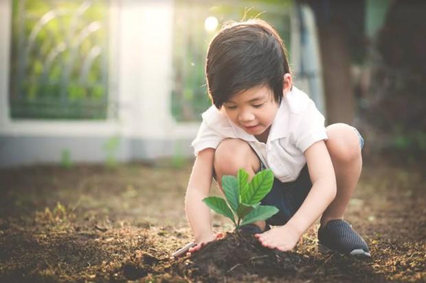 """Đã đến lúc con người """"trả"""" lại đất cho cây xanh - Ảnh 2."""