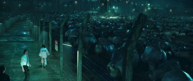 4 hành vi tàn bạo của con người với thiên nhiên bị phim ảnh lột trần: Bom tấn của Song Joong Ki làm khán giả phải khóc - Ảnh 10.