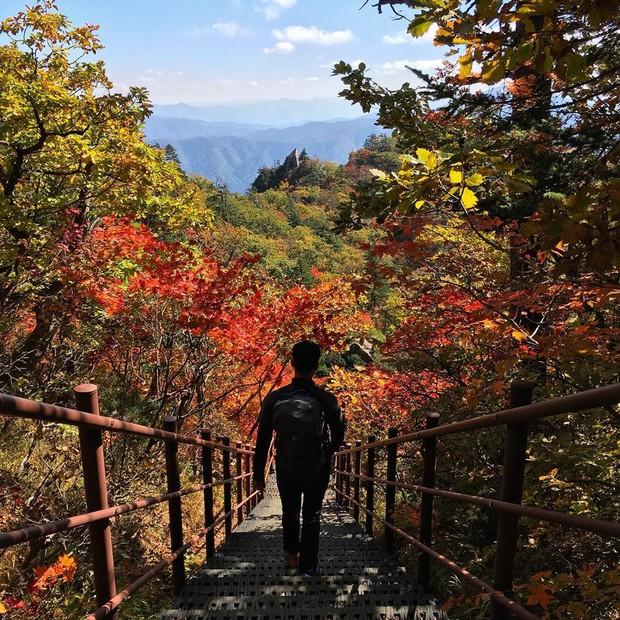 Đi Hàn Quốc mùa thu mà không ngắm lá đỏ thì uổng phí cả thanh xuân, lên lịch để hốt hình sống ảo liền nè! - Ảnh 12.