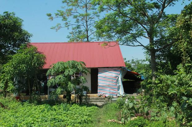 Xót xa cụ bà sống cùng con cháu trong túp lều quây bạt không điện nước suốt 24 năm ở Vĩnh Phúc - Ảnh 1.