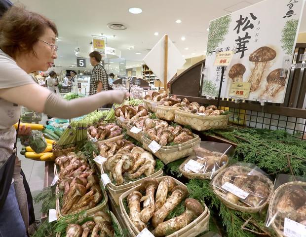 Có giá lên đến 40 triệu đồng/kg nhưng vua của các loại nấm vẫn được người Nhật ưa chuộng và dưới đây là lý do tại sao - Ảnh 1.