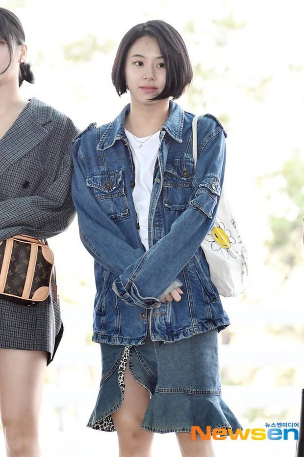 TWICE và Somi đụng độ tại sân bay: Nhan sắc dàn mỹ nhân nhà JYP lên hương, Somi gây chú ý vì được bố tài tử hộ tống - Ảnh 8.