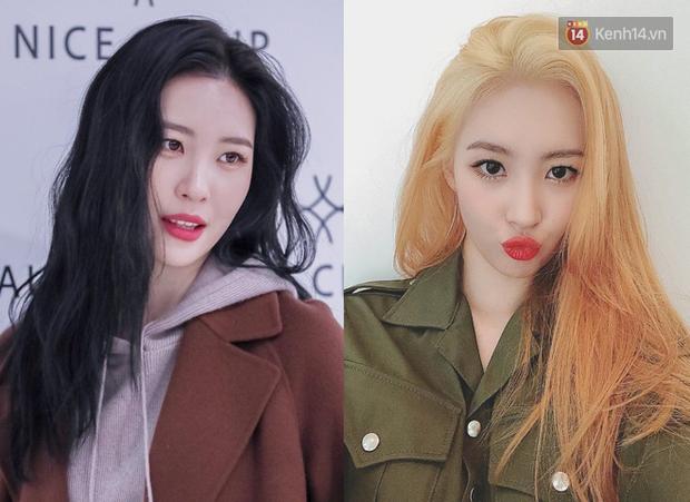 10 idol Hàn đẹp xuất thần khi để tóc vàng bạch kim chứng minh: đổi màu tóc, đời sang trang - Ảnh 5.
