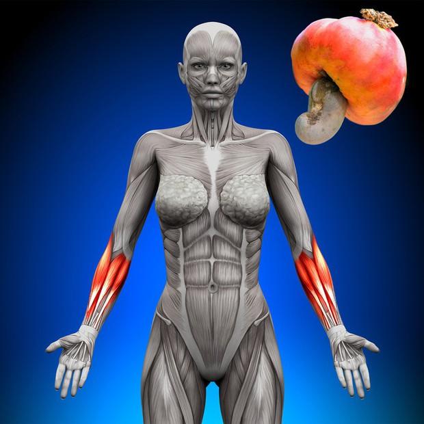 8 loại thực phẩm giúp tăng cường sức khỏe phái nữ, số 4 còn ngăn ngừa nếp nhăn xuất hiện - Ảnh 6.