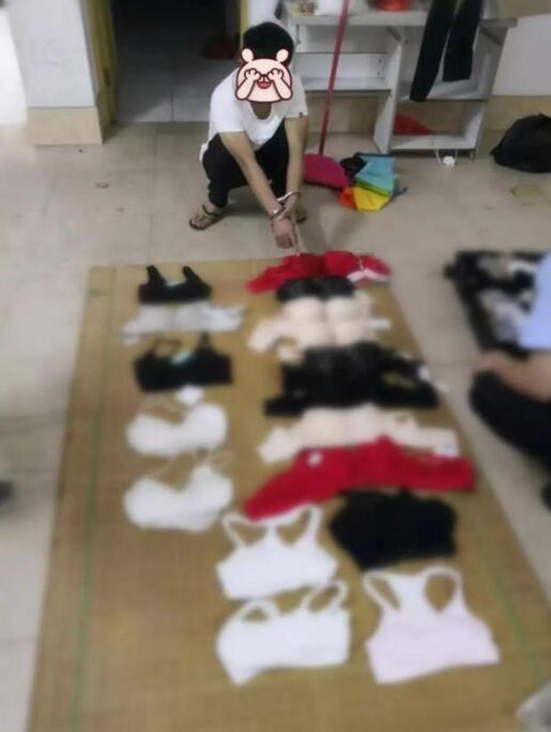 Tên biến thái trộm hơn 200 bộ nội y để dành mặc mỗi khi rảnh rỗi - Ảnh 2.