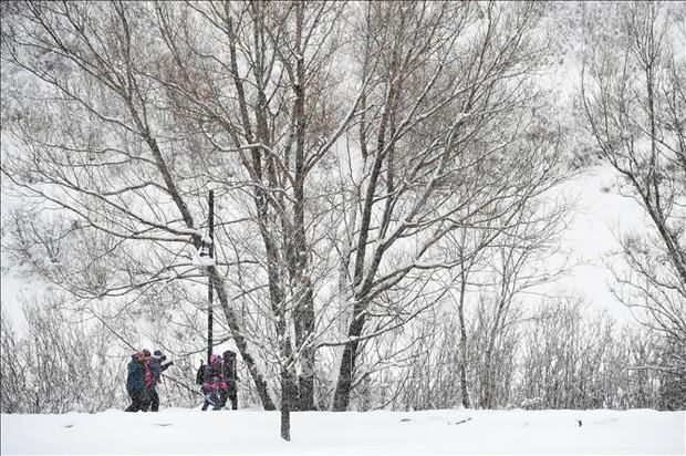 Bang Utah (Mỹ) ghi nhận mức nhiệt thấp kỷ lục xuống tới âm 37,1 độ C - Ảnh 1.