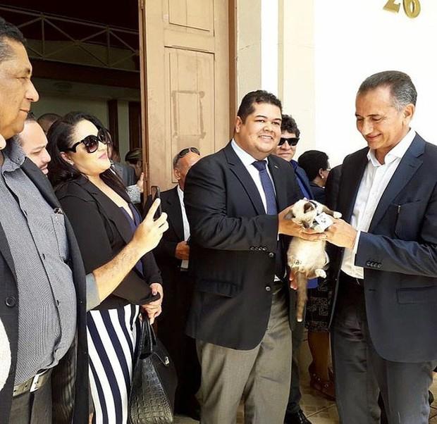 Boss mèo mặt dày lởn vởn ở văn phòng Hiệp hội Luật sư Brazil suốt 1 tuần liền, sau đấy được nhận vào làm chính thức luôn - Ảnh 5.