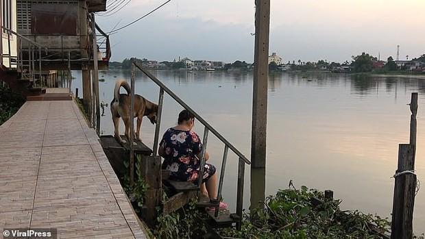 Bị lạc sau khi ngã xuống nước, chú chó trung thành vẫn ngày ngày ra bến sông ngóng chờ chủ quay lại đón - Ảnh 3.