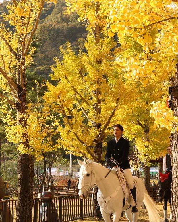 """Chùm ảnh chụp vội gây bão của Lee Min Ho trên phim trường: Đẹp ngẩn ngơ, đến mức dân tình phải thốt lên """"bạch mã hoàng tử là đây"""" - Ảnh 6."""