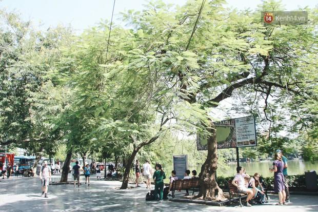 Người Hà Nội nói gì trước đề xuất cấm phương tiện lưu thông quanh Hồ Hoàn Kiếm trong 1 tháng? - Ảnh 12.