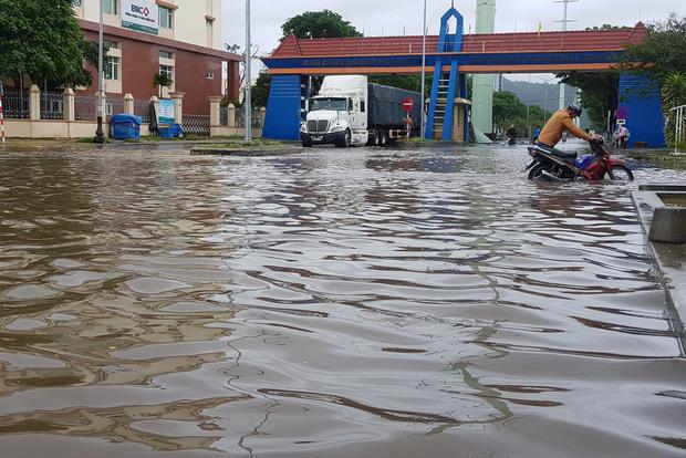 Đà Nẵng: Cây xanh ngã hàng loạt sau bão số 5, nhiều đoạn đường bị ngập khiến giao thông hỗn loạn - Ảnh 9.