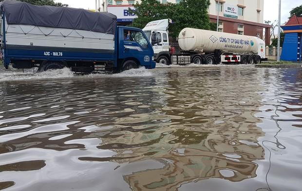 Đà Nẵng: Cây xanh ngã hàng loạt sau bão số 5, nhiều đoạn đường bị ngập khiến giao thông hỗn loạn - Ảnh 10.
