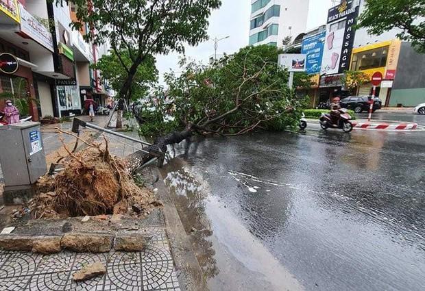 Đà Nẵng: Cây xanh ngã hàng loạt sau bão số 5, nhiều đoạn đường bị ngập khiến giao thông hỗn loạn - Ảnh 1.