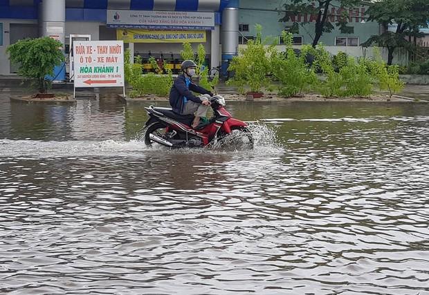 Đà Nẵng: Cây xanh ngã hàng loạt sau bão số 5, nhiều đoạn đường bị ngập khiến giao thông hỗn loạn - Ảnh 11.