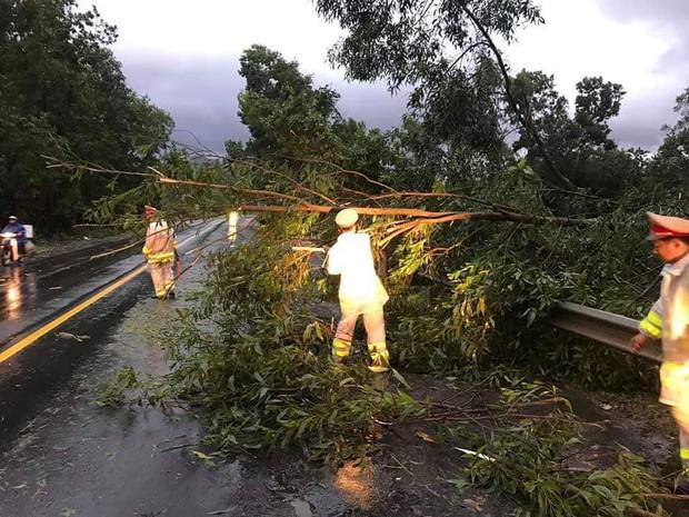 Đà Nẵng: Cây xanh ngã hàng loạt sau bão số 5, nhiều đoạn đường bị ngập khiến giao thông hỗn loạn - Ảnh 7.