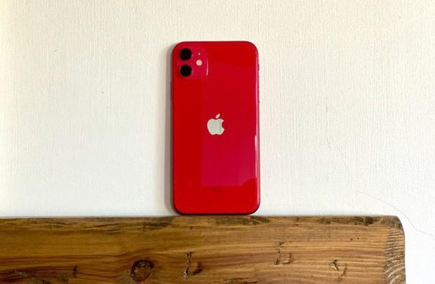 Sẽ không có iPhone 11S, năm sau Apple ra mắt thẳng tay iPhone 12 - Ảnh 1.