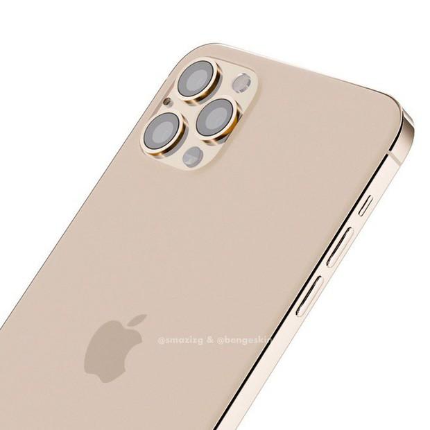 Sẽ không có iPhone 11S, năm sau Apple ra mắt thẳng tay iPhone 12 - Ảnh 2.