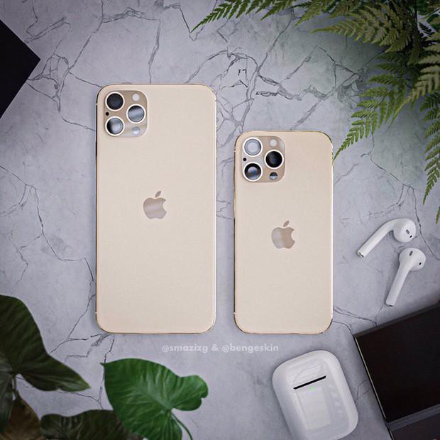 Sẽ không có iPhone 11S, năm sau Apple ra mắt thẳng tay iPhone 12 - Ảnh 3.