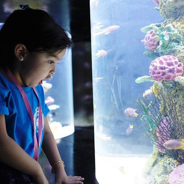 Mỹ nhân đẹp nhất Philippines Marian Rivera khoe lần đầu con gái tới thủy cung, biểu cảm đáng yêu của Zia gây sốt mạng xã hội - Ảnh 5.