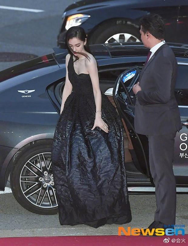 Angela Baby trắng bật tông tại thảm đỏ LHP Busan, khiến truyền thông Hàn nức nở: Nữ thần đại lục giáng trần Busan - Ảnh 8.