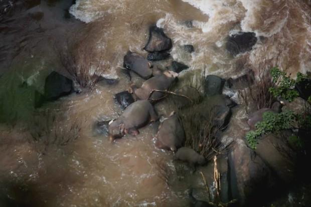 6 con voi chết thương tâm khi cố cứu nhau ở thác nước địa ngục Thái Lan - Ảnh 1.