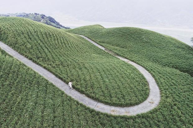Chàng ca sĩ Quang Vinh bao năm bị đồn là thiếu gia Nguyễn Kim: Bỏ hào quang sân khấu để theo đuổi đam mê du lịch với những bức ảnh chất hơn nước cất - Ảnh 31.