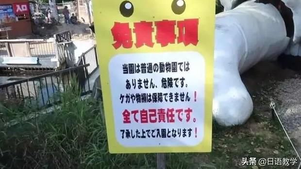 Sở thú nguy hiểm nhất nước Nhật, muốn vào phải ký bản cam kết tử thần nhưng vẫn thu hút rất đông khách du lịch tò mò ghé thăm - Ảnh 2.