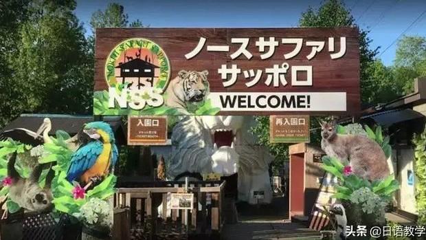 Sở thú nguy hiểm nhất nước Nhật, muốn vào phải ký bản cam kết tử thần nhưng vẫn thu hút rất đông khách du lịch tò mò ghé thăm - Ảnh 1.