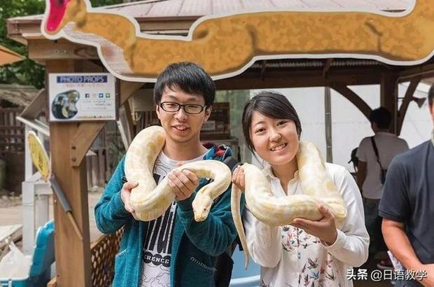 Sở thú nguy hiểm nhất nước Nhật, muốn vào phải ký bản cam kết tử thần nhưng vẫn thu hút rất đông khách du lịch tò mò ghé thăm - Ảnh 5.