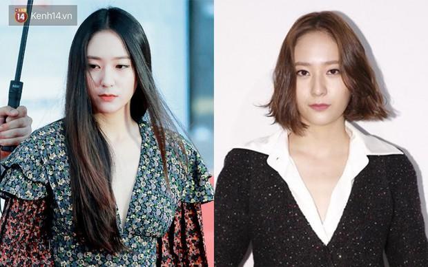 Idol Hàn cắt tóc ngắn: IU, Yoona, Wendy xinh ngất người, Krystal, Suzy lại thuộc nhóm xuống sắc - Ảnh 4.