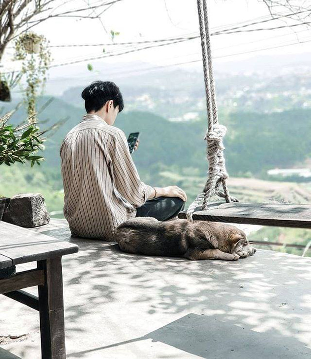 """Going to Da Lat to become a """"lotus"""" at 5 super cute dog cafes, now taking pictures to check-in with the new boss is a hot trend!  - Photo 31."""