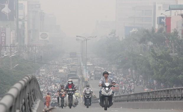 Nghiên cứu gây sốc: Ô nhiễm không khí có thể gây rụng tóc, hói đầu - Ảnh 3.