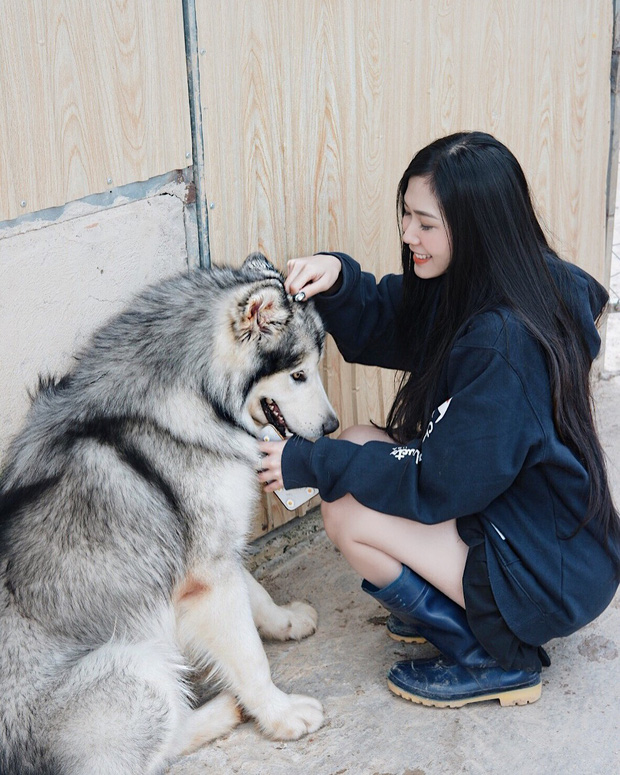"""Going to Da Lat to become a """"lotus"""" at 5 super cute dog cafes, now taking pictures to check-in with the new boss is a hot trend!  - Photo 24."""