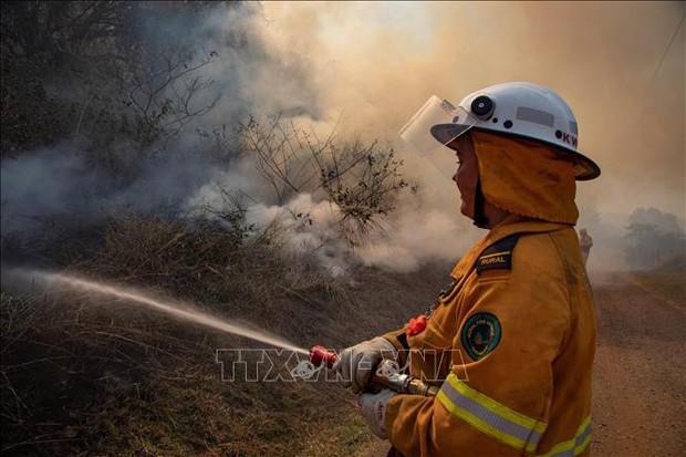Cháy rừng diễn biến phức tạp ở Australia - Ảnh 1.