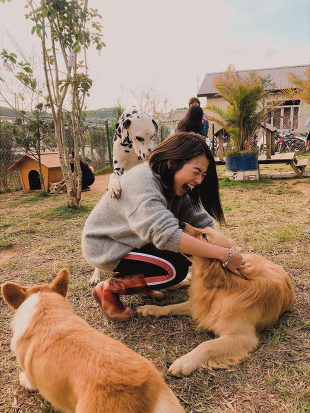 """Going to Da Lat to become a """"lotus"""" at 5 super cute dog cafes, now taking pictures to check-in with the new boss is a hot trend!  - Photo 9."""