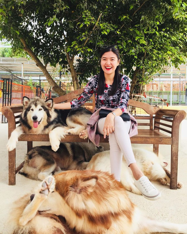 """Going to Da Lat to become a """"lotus"""" at 5 super cute dog cafes, now taking pictures to check-in with the new boss is a hot trend!  - Photo 17."""