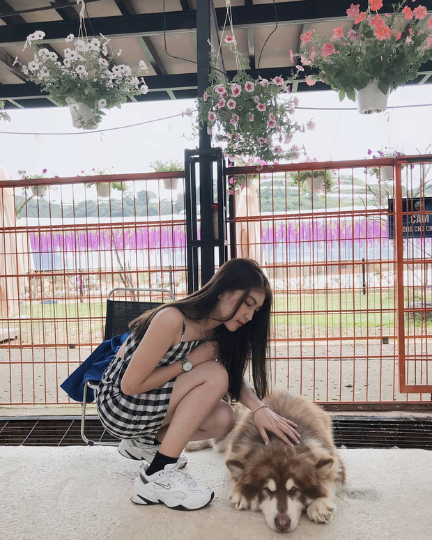 """Going to Da Lat to become a """"lotus"""" at 5 super cute dog cafes, now taking pictures to check-in with the new boss is a hot trend!  - Photo 19."""