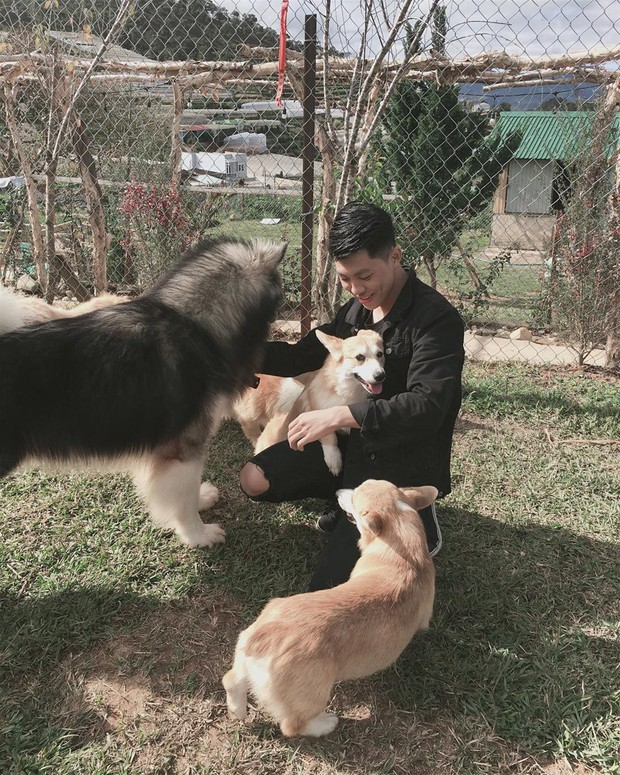 """Going to Da Lat to become a """"lotus"""" at 5 super cute dog cafes, now taking pictures to check-in with the new boss is a hot trend!  - Photo 8."""