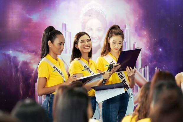 Hoa hậu Hoàn vũ VN: Thúy Vân, Hương Ly tụt hạng, bản sao Tăng Thanh Hà suýt đội sổ - Ảnh 6.