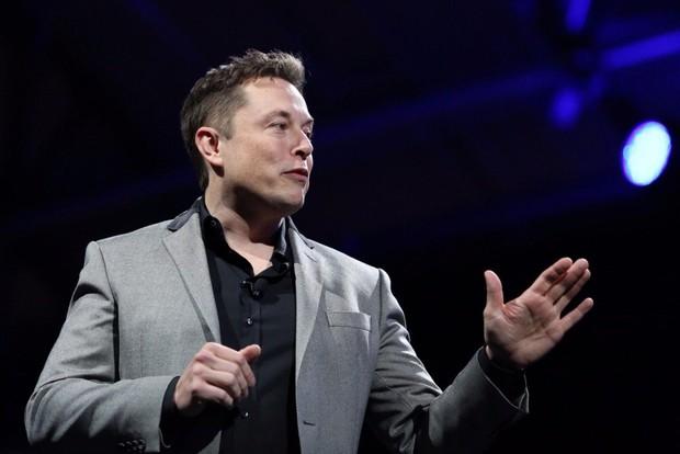 Game thủ Fortnite tổ chức trồng cây xanh, Elon Musk quyên góp hẳn 1 triệu USD - Ảnh 2.